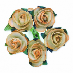 Tea Roses - Champagne - Bunch of 12