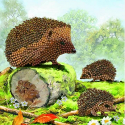 Crystal Card Kit - Happy Hedgehogs 18cm x 18cm