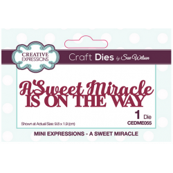 Sue Wilson Cutting Dies - A Sweet Miracle Is On The Way