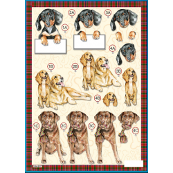 Die Cut Decoupage - Pet Dogs-Daschund Puppy