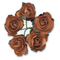 Tea Roses - Terracotta - Bunch of 12