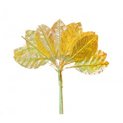 Bridal Fabric Leaves - Gold