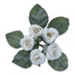 Two Tone Rose with Leaf White Pack of 6